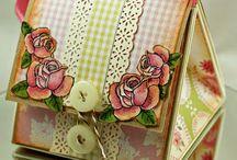 Card Shapes & Folds