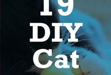 Pet D.I.Y and Supplies