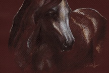 my original drawings - horses / My horses in colored pencil, pastel pencil, pen and ink / by Yelena Shabrova
