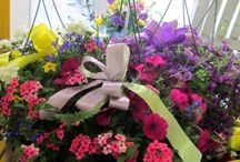 Mother's Day / Mother's Day floral arrangements & gift ideas