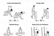 body building excercise