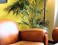 Posts Hotel Miró