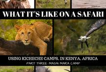 Travels in Africa