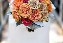 Wedding Flowers / by Teri Henman