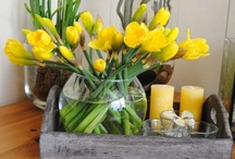 Spring - Yellow - Easter