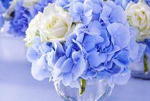 Blau / Wedding Deko