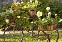 Recycable Garden