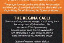 Catholic Infographics