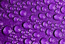 PurpleWorld / All I love is purple!!