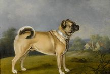 19th Century Animals / Dogs, Cats, Horses, Birds, and Other Animals as Depicted in 19th Century Art, Print Images, and Photographs.