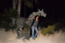 Una Noche estupenda en El Club Ecuestre de Betera!!! / los caballos me encantan y los coches tambien