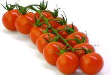 Pomodori - Tomatoes / POMODORI Azienda Agricola Zanarini via Belvedere di sotto, 15 41057 Spilamberto (Modena) NUOVO SPACCIO: Modena, via Emilia Est 159