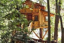 Tree Houses of the World / I am specifically searching for Tree Houses for this board! / by S'alfrico Watson-Grant