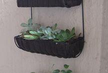 Outdoors/gardening