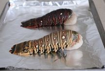 Lobster Tail Time / Grilled, boiled or stuffed, there are endless options for cooking lobster tails!