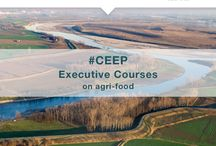 CEEP Cremona Executive Courses for Expo 2015 in May / #CEEP Cremona Executive Education Program for #Expo2015