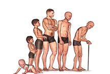 Medicina Antienvelhecimento