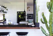Cactus goals