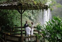 Wedding / by Kaitlin Holmes