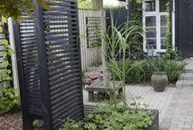 Outdoor ☘️ garden