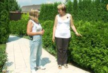 Сад : планикровка