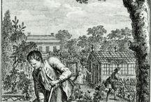 Metszetek kertészkedés