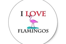 Flamingos and all things quirky / by Gloria Cannon