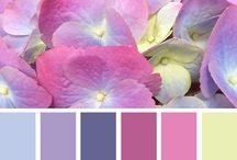 all color palette