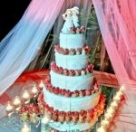 Taglio Torta / Scopri come rendere unico ed indimenticabile il momento più dolce del tuo matrimonio