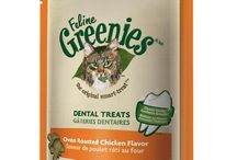 Cat Treats / Delicious cat treats to keep your feline purring!