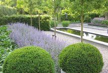 tuin/garden / alles voor de tuin