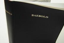 Nzema /African Bibles