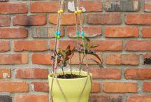 plants' macramé