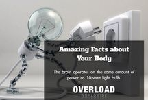 Overload Worldwide Amazing Facts / Amazing Facts About Your Body