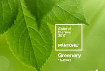 Color of the year Pantone Greenery 15-0343