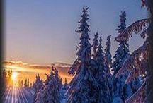 Vinter labdskap