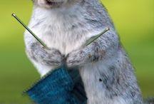 funny knitting !!