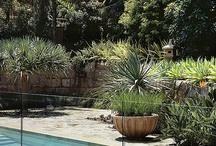 avalon garden