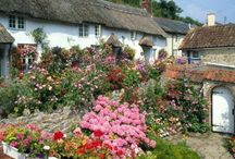 DAY TRIPS - BEER & BRANSCOMBE, SOUTH DEVON / About 73 miles (a 1 hr 35 mins drive).