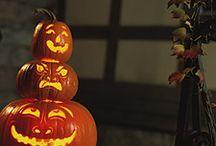 festivities    autumn