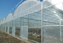 Greenhouses & Kits online sale, Polycarbonate Agriculture, Farms, Nurseries Greenhouse / Select high quality polycarbonate greenhouses products varied in style online sale, Commercial plastic polycarbonate greenhouses ideal for agriculture, farms, nurseries and more. Plastic PC greenhouses UV protection, resist weathering and rusting, It is structurally designed to withstand high winds and heavy snowfall.
