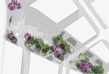 urban /site plan