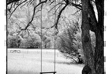 Swings / by Deb Hain