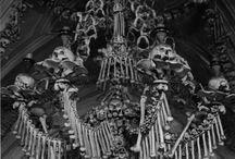 Bones & Spooks