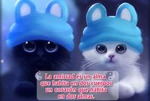 VIDEOS DE AMOR SLIDELY ♥ ♥ ♥ ♥ ♥ ♥ / CON TODO MI CARIÑO ♥