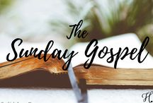 The Sunday Gospel