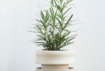 Taylor Ceramics Instagram #planterwithdrainage  #wheelthrownstoneware  #doublewalled #unglazed  #botanical #available