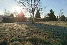 Domaine de l'Angelaud en hiver :)