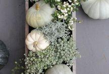 Décoration d automne
