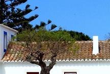 Portuguese houses